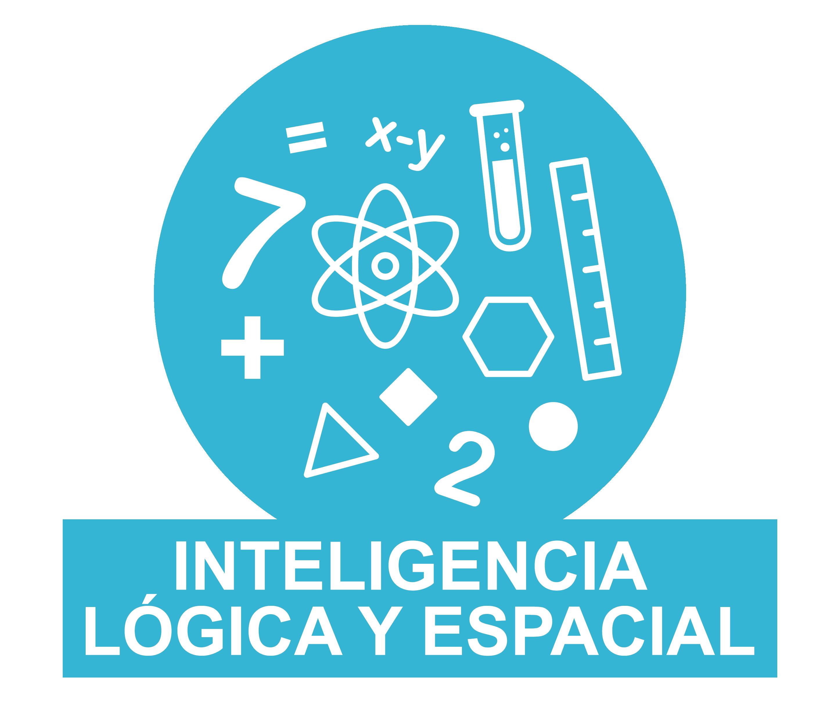 Inteligencia lógico matemática despierta grupal