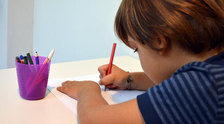 Nuestro objetivo es dar solución a los niños con necesidades específicas derivadas de las altas capacidades